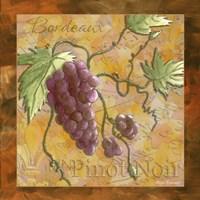 Wine 11 Framed Print