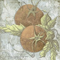 Buon Appetito Tomatoes Fine Art Print