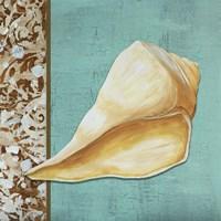 Yellow Seashell - Tan Side Border Teal Crackle Back Framed Print