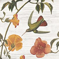 Vintage Hummingbird I by Wild Apple Portfolio - various sizes