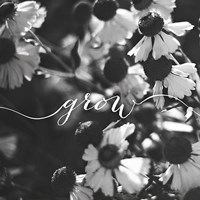 Grow by Laura Marshall - various sizes