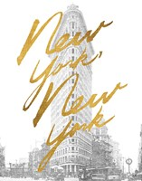 Gilded New York by Moira Hershey - various sizes