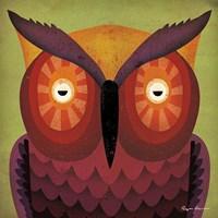 Owl WOW Fine Art Print