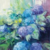 Bright Hydrangea III Fine Art Print