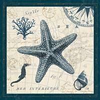Ocean Life V Fine Art Print