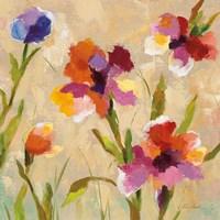 Bold Bright Flowers III Framed Print