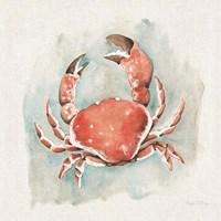 Coastal Mist Crab Fine Art Print