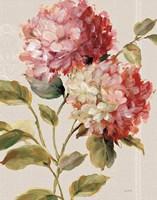 Harmonious Hydrangeas Linen Fine Art Print