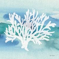 Sea Life Coral II Fine Art Print