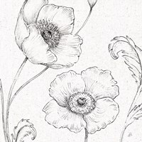 Blossom Sketches I Fine Art Print