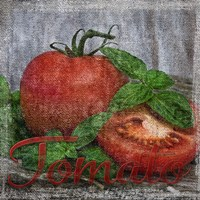 Vintage Tomatoes by Andrea Haase - various sizes