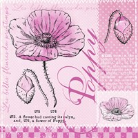 Poppy Pink by Andrea Haase - various sizes