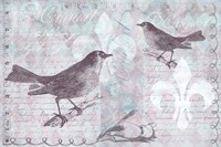 Vintage Bird 33 I by Andrea Haase - various sizes