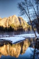 Yosemite Falls reflection in Merced River, Yosemite, California Fine Art Print