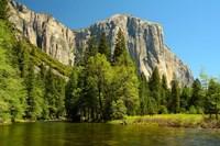 Merced River on the Valley Floor, Yosemite NP, California Fine Art Print