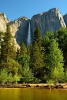 Merced River, Yosemite NP, California Fine Art Print