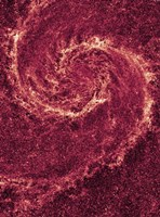 Hubble NICMOS Infrared Image of M51 Fine Art Print