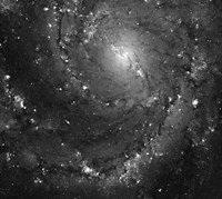 Hubble Space Telescope Imaging of Hot Gas and Star Birth in M101 Fine Art Print