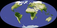 The Normalized Difference Vegetation Index - various sizes