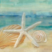 Horizon Shells I Fine Art Print