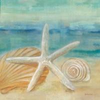 Horizon Shells I Fine Art Print