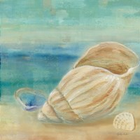 Horizon Shells II Fine Art Print