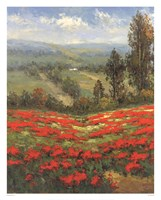 Poppy Vista II Fine Art Print