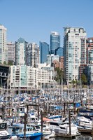 Marina on False Creek, Downtown Vancouver, BC, Canada Fine Art Print