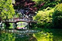 British Columbia, Vancouver, Hately Gardens bridge Fine Art Print