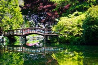 British Columbia, Vancouver, Hately Gardens bridge Fine Art Print