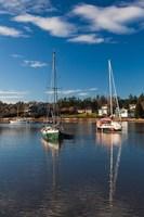 Comox Harbor, Vancouver Island, British Columbia, Canada by Walter Bibikow - various sizes