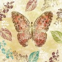 Botanical Beauty II Framed Print