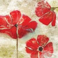Poppy Passion I by Rebecca Lyon - various sizes