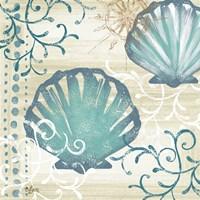 Tranquil Shell I Framed Print