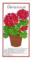 Geranium by Marlene Siff - various sizes