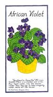 African Violet Fine Art Print