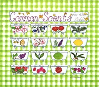 Common Scents by Marlene Siff - various sizes