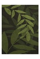 Green Leaves 1 Fine Art Print