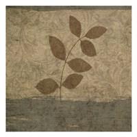 "Vintage Leaves 1 by Kristin Emery - 13"" x 13"""