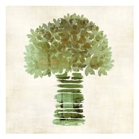 Broccoli Fine Art Print