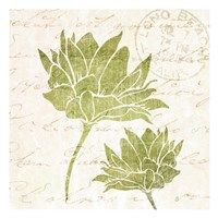 "Hand Writing Flower 1 by Kristin Emery - 13"" x 13"", FulcrumGallery.com brand"
