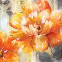 Orange Crush II Framed Print