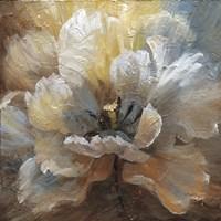 Blooming III Fine Art Print