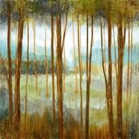 Soft Forest I Framed Print