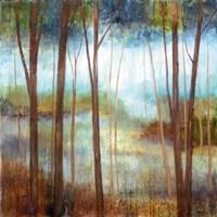 "Soft Forest II by Nan - 20"" x 20"""