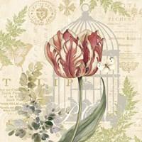 Floral Nature Trail II Fine Art Print