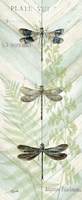 Dragonfly Botanical Panels II Fine Art Print