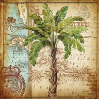 Antique Nautical Palms I Fine Art Print