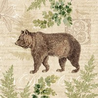 Woodland Trail II (Bear) Fine Art Print