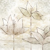 Floral Sketch II by Rebecca Lyon - various sizes
